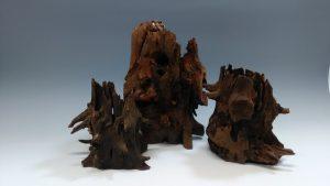 アクアリウムに使う流木の入手方法とアク抜きのアレコレ!の画像