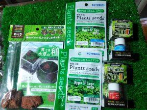 種から育てる新しいタイプの水草の画像